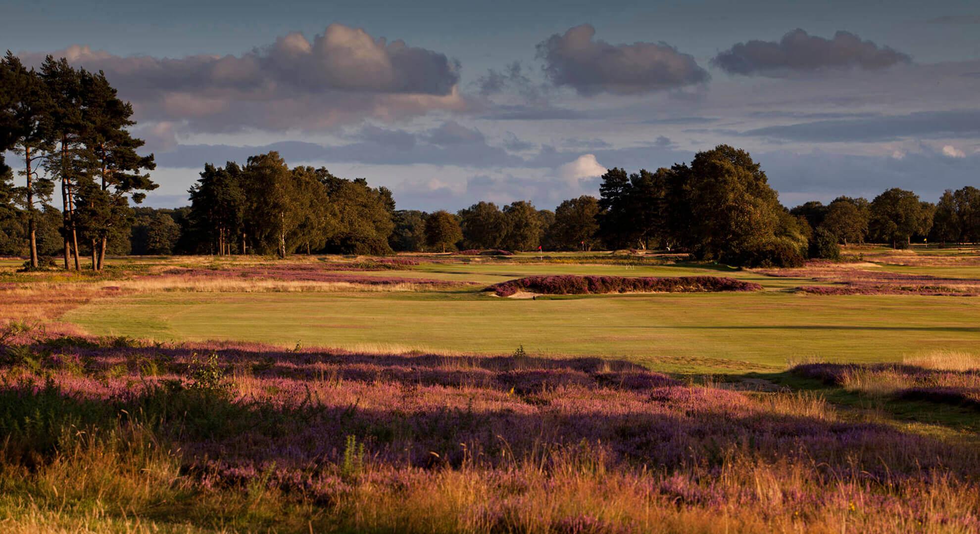 Walton Heath New Golf Course, South East England