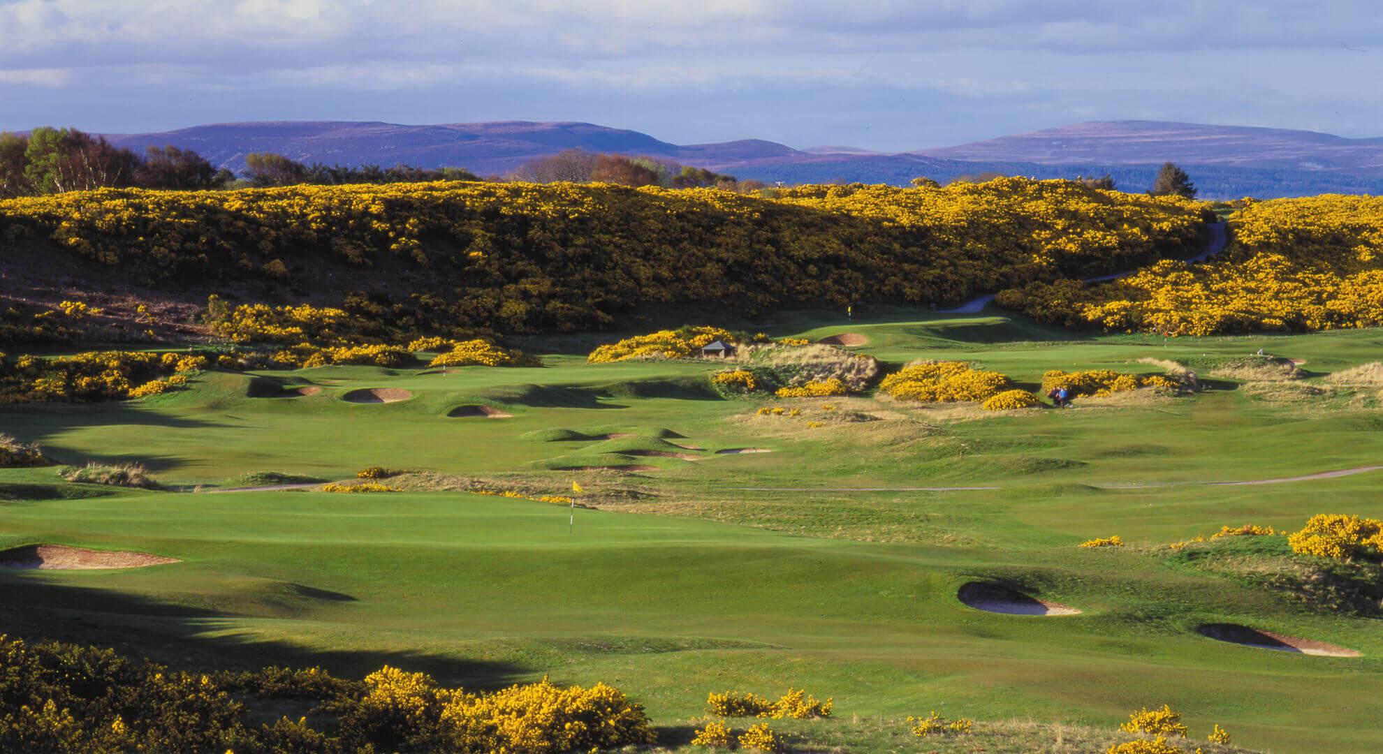 Royal Dornoch Golf Course, Highlands